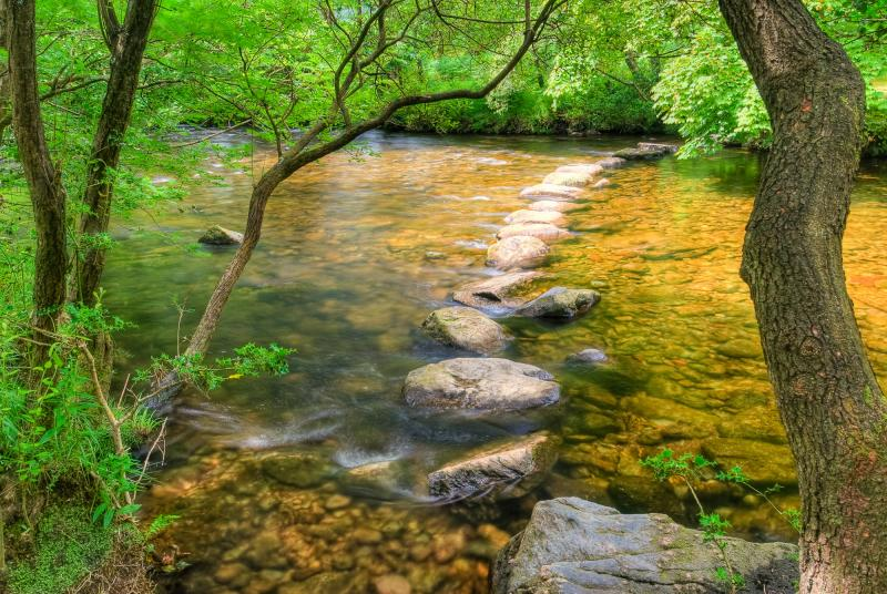 Stepping stones across a river - (c) NERC