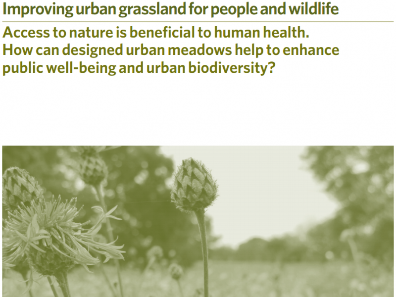 LWEC Policy & Practice Note: Improving urban grassland for people and wildlife